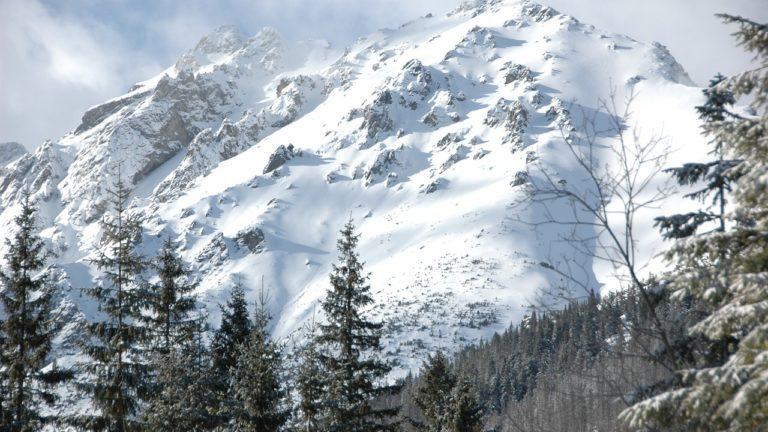 Gdzie kupić sprzęt i odzież na narty?