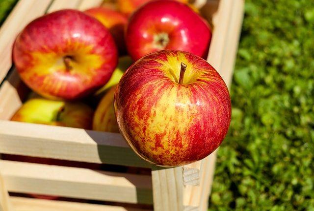 Przechowywanie jabłek przez zimę