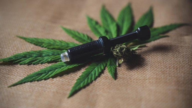 Gama feminizowanych nasion do upraw marihuany